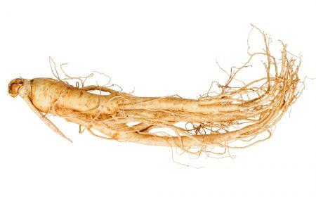 Foto von einer Ginseng-Wurzel